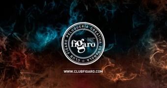 MDB Education, the prestigious online training firm, renews its commitment to Club Fígaro – Creative Spanish Hairdressing